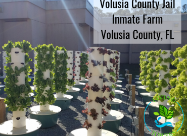 Volusia County Jail Inmate Farm