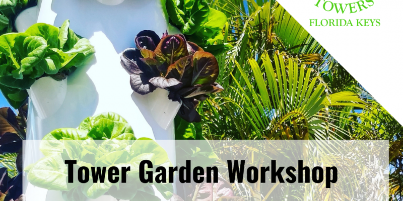 Florida Keys Tower Garden Workshop