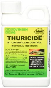 Thuricide Caterpillar Control